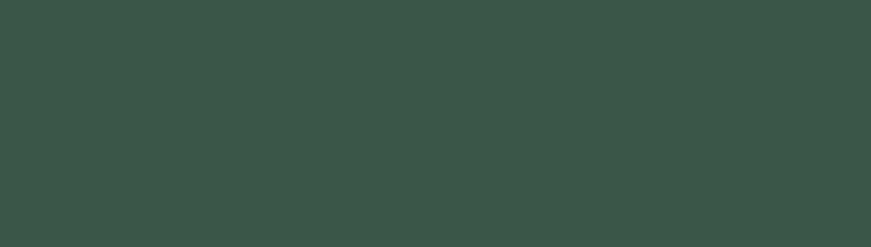 Chesapeake Montessori School Logo